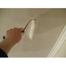 Чем лучше покрасить потолок: известкой или водоэмульсионной краской