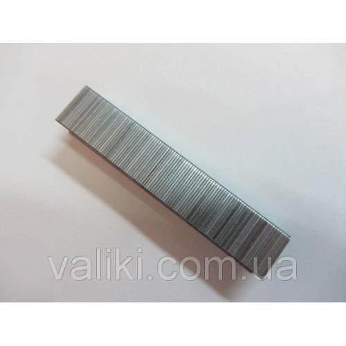Скоба для степлера | 14 мм Topex, Скоба для степлера | 14 мм Topex, Степлеры и скобы